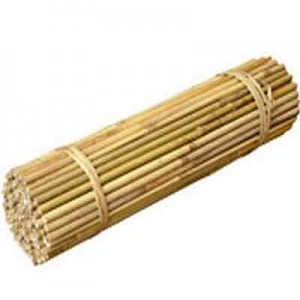 8ft Bamboo Canes Extra Thick (18-20mm)