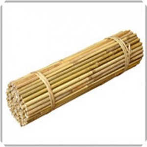 7ft Bamboo Canes EXTRA THICK (14-16mm)  Economy Packs of 50 s1507