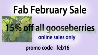 15% Off Gooseberries -while they last! Green and Red Bare Root!