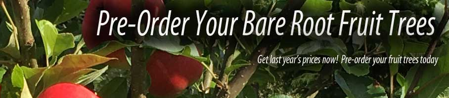 Bare Root Fruit Trees at last year's prices!  Another 10% off - coupon code - fall2016