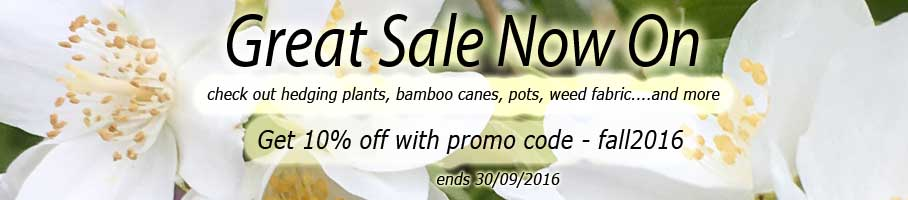 ScotPlants Direct Great Fall Sale - Get 10% Off All Products- coupon code - fall2016